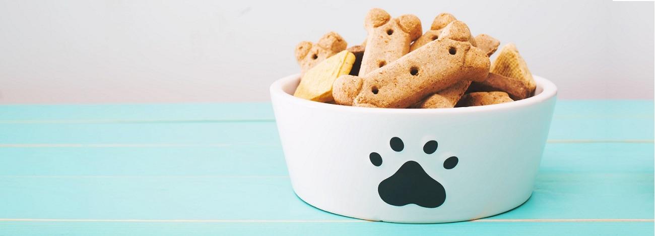 Geriausias šunų maistas